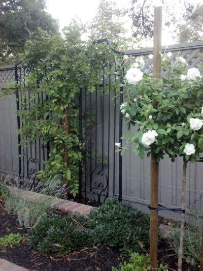custom fencing and plant installation