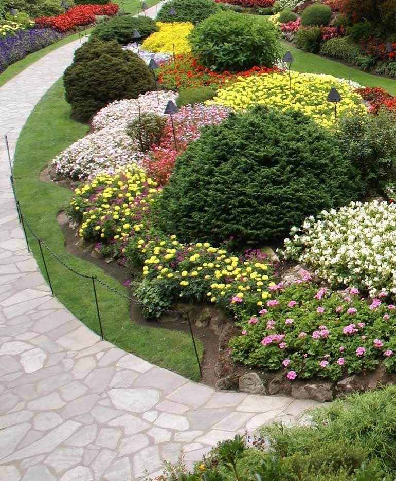 Flower garden, mulch, and natural stone walkway installed by our landscapers in Los Gatos