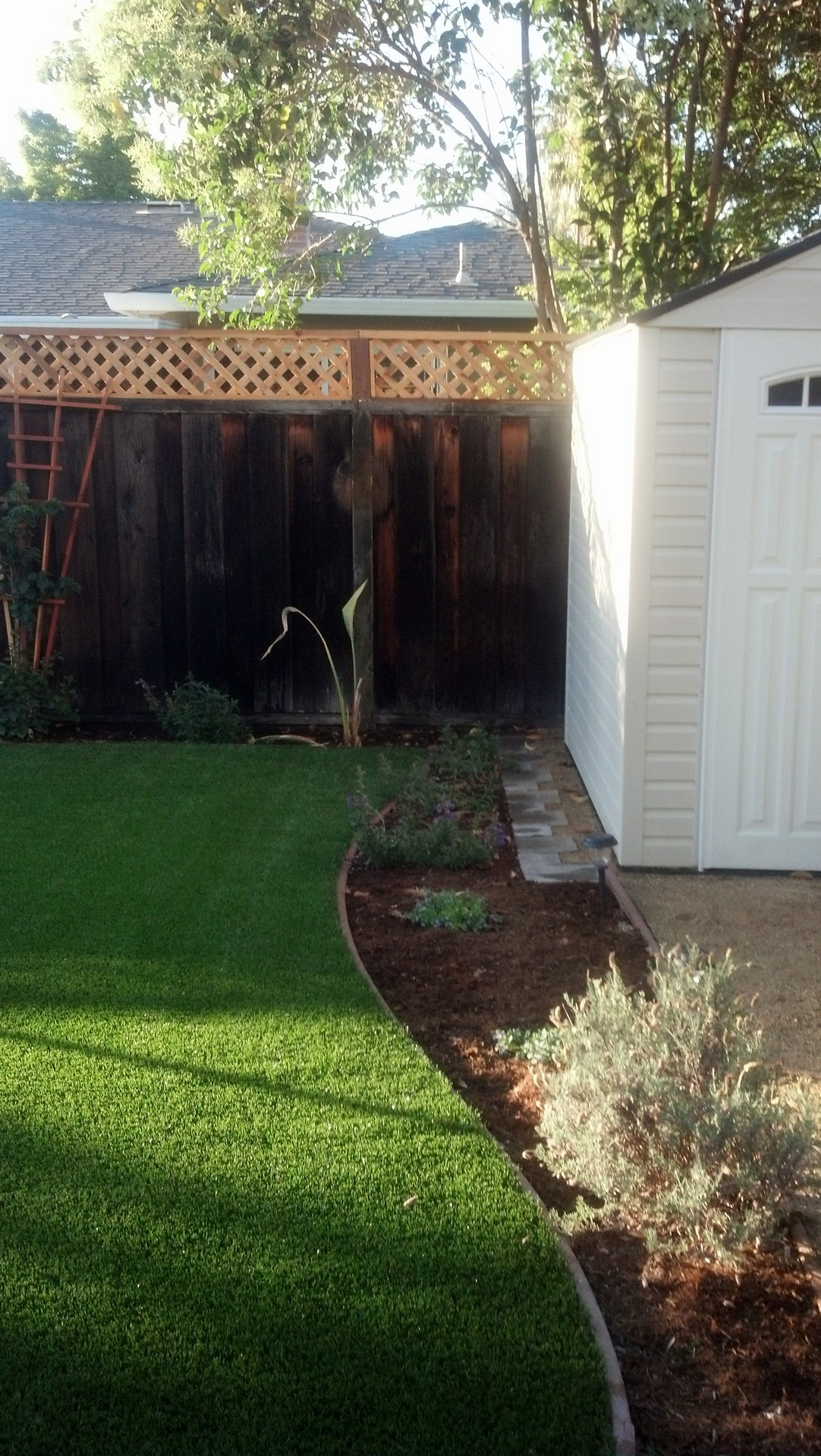 custom shed and lawn