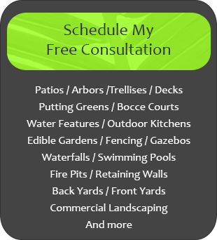 Schedule my free consultation