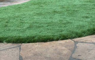 the environmental impact of synthetic turf
